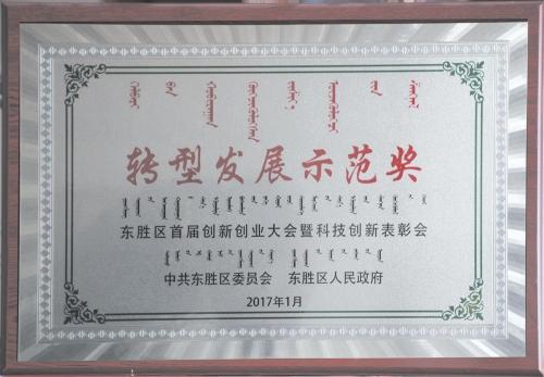 转型发展示范奖